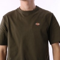 Afbeelding van Dickies 06 210578-DKO T-shirt Stockdale Dark olive