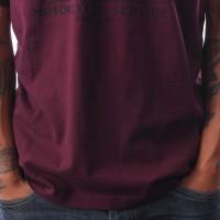 Afbeelding van Dickies Hardyville 06 210612 T Shirt Maroon