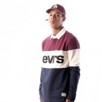 Afbeelding van Levi`s MIGHTY BLOCKED RUGBYPOLO 56806-0000 Polo Longsleeve Fig Purple/ Marshmallow/ Blues W/ Black