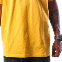 Afbeelding van Carhartt WIP S/S Chase T-Shirt I021949 T-shirt Quince / Gold
