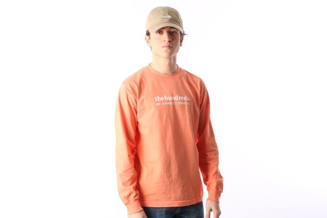 Foto van The Hundreds X Carrots By Anwar L17W301003 Longsleeve Wordmark Roze