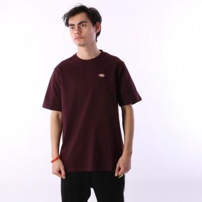 Dickies 06 210578-MR T-shirt Stockdale Bruin