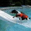 Afbeelding van Azalp Skamper-Ramp trap speciaal voor honden