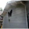 Bild 21 von Azalp Blockhaus Lis 350x350 cm, 45 mm