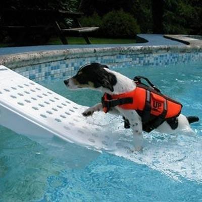 Hoofdafbeelding van Azalp Skamper-Ramp trap speciaal voor honden