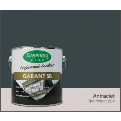 Hoofdafbeelding van Koopmans Garant SB, Antraciet 289, 2,5L