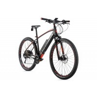 Foto van Leader Fox E-Bike Swan MTB 29