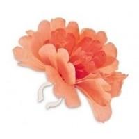 Foto van Basil Flower Pioenroos oranje losse bloem