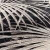 Afbeelding van Palm carpet 170x240 by night