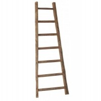 Foto van Ladder low small