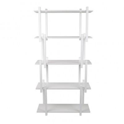 Build Shelf Cabinet 5 planken