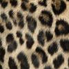 Afbeelding van Sock My Feet Leopard Sokken