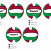 Afbeelding van Winart Waterpolobal rood/groen/wit mt. 5