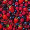 Afbeelding van Sock my fruit
