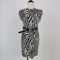 Foto van zebra dress