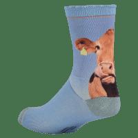 Foto van sock my cow