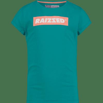 Raizzed honolulu shirt green blue