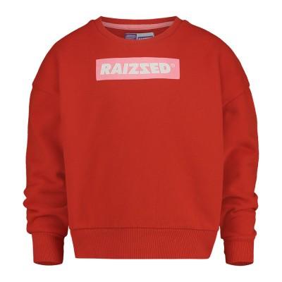 Raized sweater