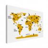 Wereldkaart Dieren Per Continent Geel