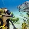 Afbeelding van GoPro Blue Water Dive Filter (for Super Suit)