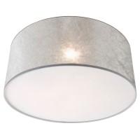 Foto van Steinhauer Gramineus Zilver Plafondlamp 1-lichts 9684W