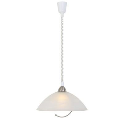 Steinhauer Burgundy Staal Hanglamp 1-lichts 7111ST