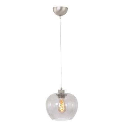 Steinhauer Lotus Staal Hanglamp 1-lichts 1329ST