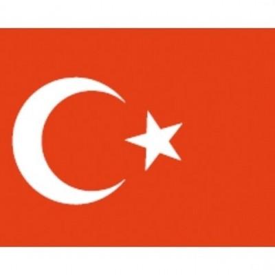 TURKSE VLAG 20X30