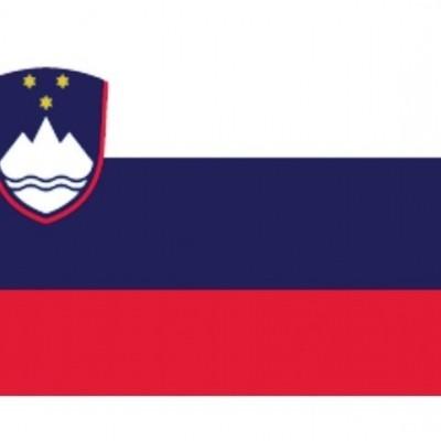 SLOVEENSE VLAG 30X45