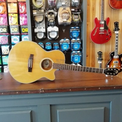 Epiphone EO-1 OCCASION met koffer