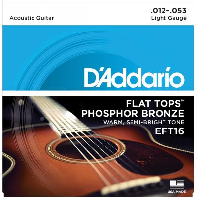 DAddario EFT16 Flat Tops Phosphor Bronze Light 012-053